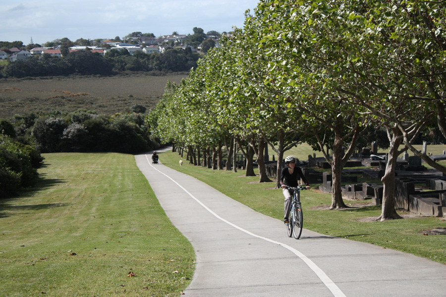 to takapuna green route
